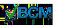 BCM Srl